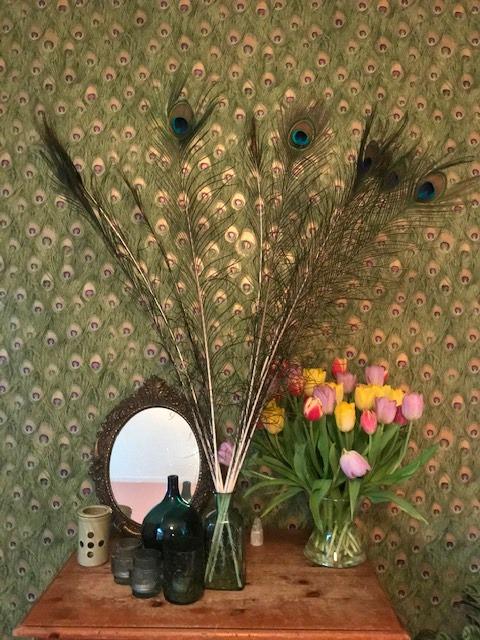 Pauwenveren-behang